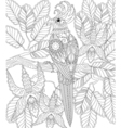 Exotic tropical zentangle bird for adult anti vector image vector image