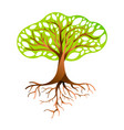green tree with branches and roots vector image