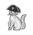 pirate cat character sketch vector image vector image