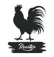 rooster chicken emblem vector image