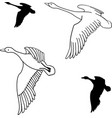 set of flying wild ducks vector image vector image