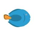 blue fish dish life exotic vector image