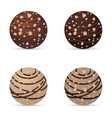 chocolate nuts ball with hazelnut dark and white vector image
