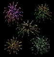 Collection five holiday Fireworks vector image
