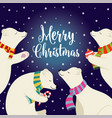 cute flat design christmas card with polar bears vector image vector image
