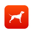 dog icon digital red vector image