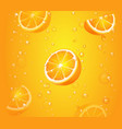 orange fruits with slices in juice of citrus vector image vector image