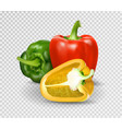 photo-realistic red paprika whole vector image vector image