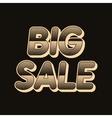 background big sale vector image vector image