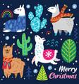Christmas llamas characters decorative cactuses