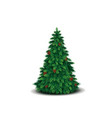 christmas tree with lush green branches and cones vector image