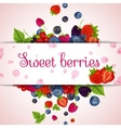 Fresh berries card vector image vector image