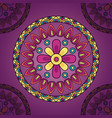 mandala floral decoration ethnic design vector image