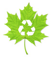 Recycle Green Leaf vector image vector image