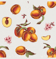 seamless pattern with hand drawn peach branches vector image vector image