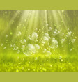soap bubbles on a nature background vector image
