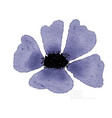 watercolor blue flower isolated on white vector image vector image