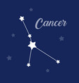 cancer sign constellation icon on dark vector image vector image