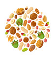 cartoon seeds and nuts almond peanut cashew vector image