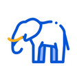 elephant icon outline vector image