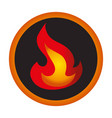 fire flame isolated icon vector image vector image