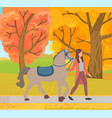 rider and horse in park ride in autumn vector image vector image