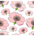 seamless pattern of pink flowering of dog rose on vector image vector image
