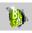 Big sale discount advertisement vector image