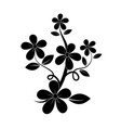 black silhouette flower vector image vector image