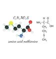 C5H11NO2S methionine amino acid molecule vector image vector image