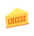 cheddar - cheese piece vector image vector image