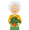 elderly gardener woman holding flower in pot vector image vector image