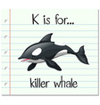 Flashcard letter K is for killer whale vector image vector image