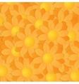 Yellow And Orange Gerberas vector image