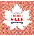Autumn sale banner Fall Festival Background Maple vector image
