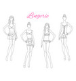 beautiful fashion models in lace lingerie vector image vector image