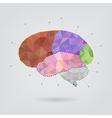 Brain concept creative triangle style v1 vector image vector image