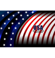 flag usa backgrounds style vector image vector image