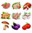 meat products and vegetables food in cartoon style vector image