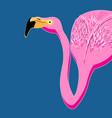 portrait of pink flamingos vector image