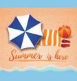 summer concept design vector image