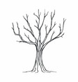 tree silhouette on white background vector image vector image