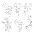 Decorative floral elements for design vector image