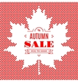 Autumn sale banner Background Maple Leaf Fall vector image vector image