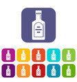 bottle of whiskey icons set flat vector image vector image
