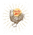 handmade drawing Rooster vector image