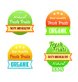 Labels of healthy fresh fruits vector image