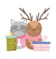 merry christmas celebration raccoon and reindeer vector image vector image