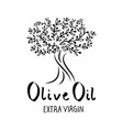 olive tree hand drawn and handwritten text vector image vector image