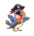 Robin Bird Pirate vector image vector image